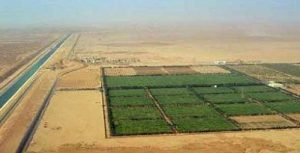 مشروع الـ1,5 مليون فدان