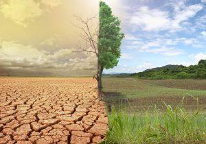 التغيرات المناخية وأثرها على الغذاء