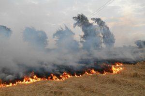 حرق المخلفات الزراعية