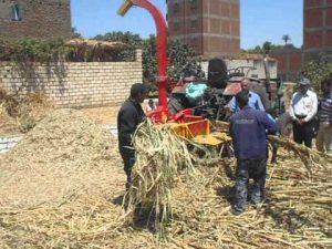 تدوير المخلفات الزراعية ـ أرشيفية