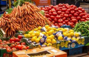 زيادة تصدير السلع الزراعية لروسيا