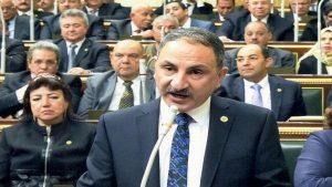 مجدى ملك، عضو لجنة الزراعة بالبرلمان