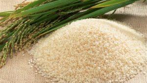 نقابة الفلاحين ترفض توريد الأرز بـ3000 جنيه للطن