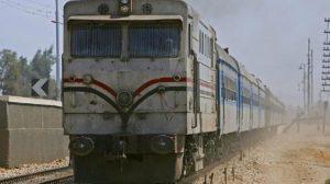 قطار مُعطل بسبب سقوط نخلة على القضبان