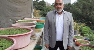 د.رضا الشحات، أستاذ الأزولا بمعهد بحوث الأراضي والمياه والبيئة